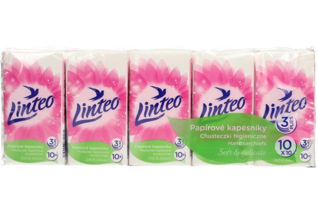 Foto 2 - Papírové kapesníky Linteo 3vrstvé 10x10