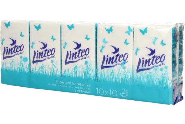 Foto 3 - Papírové kapesníky Linteo 2vrstvé 10x10