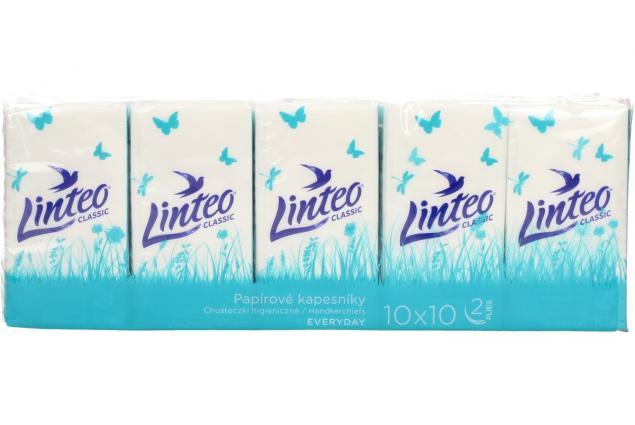 Foto 2 - Papírové kapesníky Linteo 2vrstvé 10x10