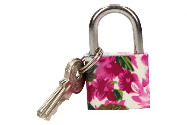 Foto 3 - Malý barevný bezpečnostní zámek s klíči 32 mm na kufr