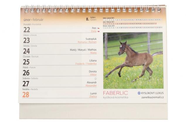 Foto 4 - Kalendář 2021 Koně 22 x 17 cm