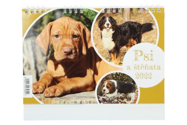 Foto 2 - Kalendář 2022 Psi a štěňata 22 x 18 cm