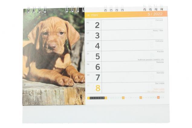Foto 3 - Kalendář 2022 Čtyřnozí přátelé 22 x 18 cm